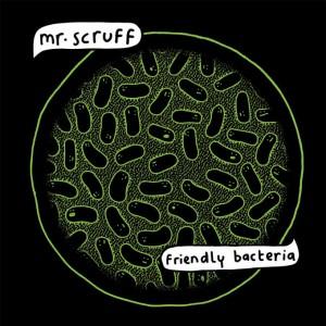 Friendly_Bacteria