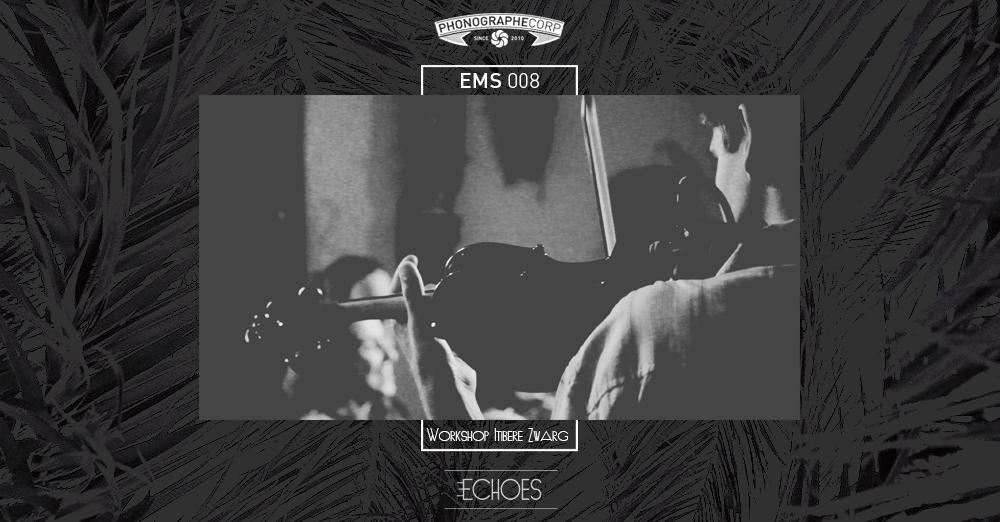 EMS008 – Workshop Itiberê Zwarg