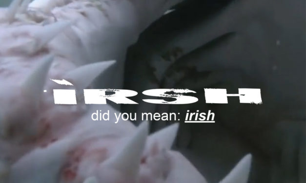 V/A – irsh, did you mean: irish