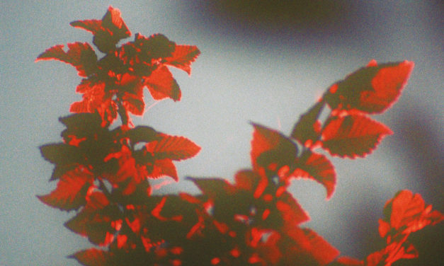 SSIEGE – Meteora